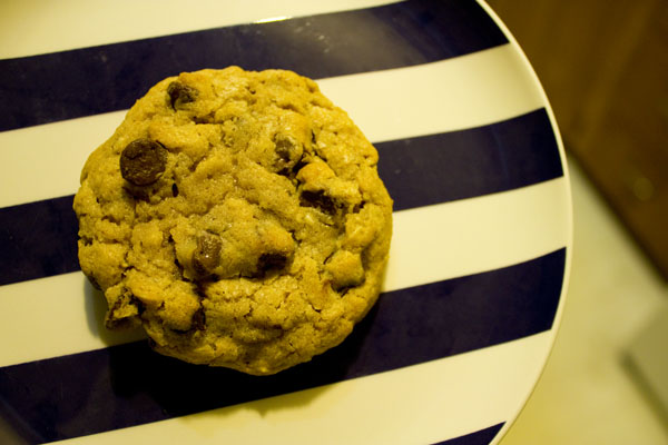 Chewy Chocolate Chip Oatmeal Cookie